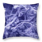 Blue Cheese Throw Pillow