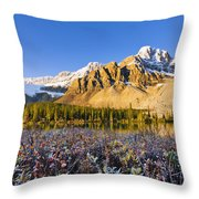 Bow Lake And Crowfoot Mountain Throw Pillow