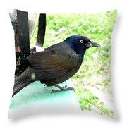 Brewers Black Bird Throw Pillow