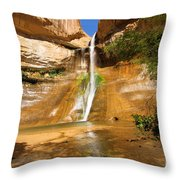 Calf Creek Falls Canyon Throw Pillow