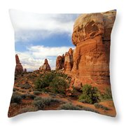 Chesler Park Throw Pillow