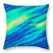 Cholesteric Liquid Crystals Throw Pillow