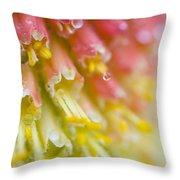 Close Up Of Flower Stamen Throw Pillow