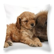 Cockerpoo Puppy And Rabbit Throw Pillow