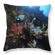 Colorful Reef Scene With Coral Throw Pillow