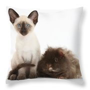Colorpoint Rabbit And Siamese Kitten Throw Pillow