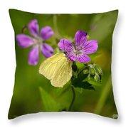 Common Brimstone Throw Pillow