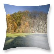 Composite Of Fall And Winter Throw Pillow