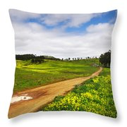 Countryside Landscape Throw Pillow