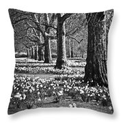 Daffodils In St. James's Park Throw Pillow