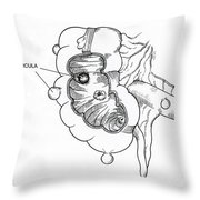 Diverticulitis Throw Pillow