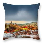 Dolly Sods Wilderness Throw Pillow