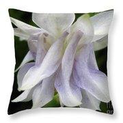 Double Columbine Named Light Blue Throw Pillow