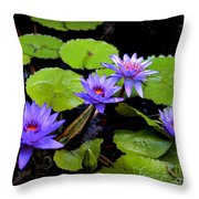 Dragonfly Dream Throw Pillow
