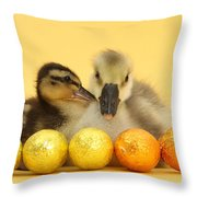 Embden X Greylag Gosling And Mallard Throw Pillow