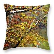 Fall Along West Fork River Throw Pillow