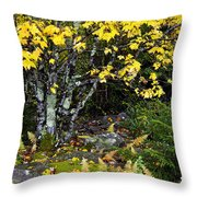 Fall Color Highland Scenic Highway Throw Pillow