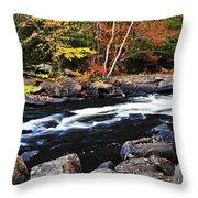 Fall Forest And River Landscape Throw Pillow