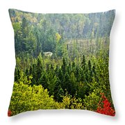 Fall Forest Rain Storm Throw Pillow