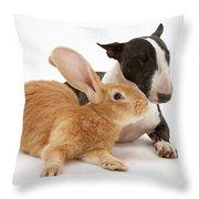 Flemish Giant Rabbit And Miniature Bull Throw Pillow