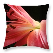 Floral 0039 Throw Pillow