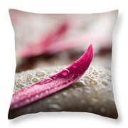 Flower Petals Throw Pillow