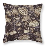 Foraminiferous Limestone Lm Throw Pillow by M. I. Walker