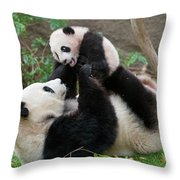 Giant Panda Ailuropoda Melanoleuca Throw Pillow