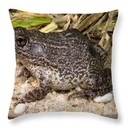 Gopher Frog Throw Pillow