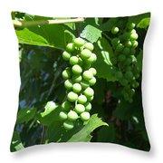 Green Grape Bunch Throw Pillow