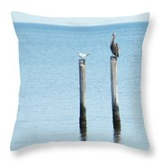 2 Gulls And A Pelican Throw Pillow