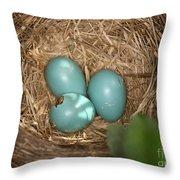 Hatching Robin Nestlings Throw Pillow