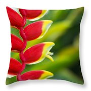 Heliconia Blossom Throw Pillow