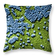 Hepatitis Virus Throw Pillow