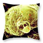 Hiv-1 Infected T4 Lymphocyte Sem Throw Pillow