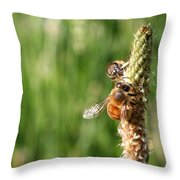 2 Honey Bees Hard At Work Throw Pillow