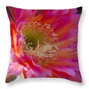Hot Pink Cactus Flower Throw Pillow