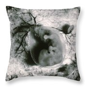 Human Embryo Throw Pillow by Omikron