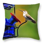 Hummer At The Feeder Throw Pillow