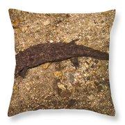 Japanese Giant Salamander Throw Pillow