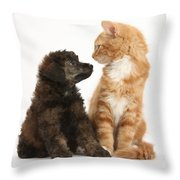 Kitten And Puppy Throw Pillow