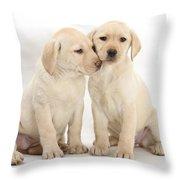 Labrador Retriever Puppies Throw Pillow