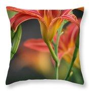 Lady Orange Lily Throw Pillow