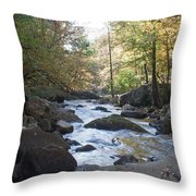 Laurel Creek Throw Pillow
