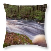 Liesijoki Throw Pillow