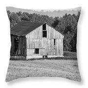 2 Line Barn 15087b Throw Pillow