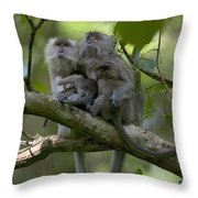 Long-tailed Macaque Macaca Fascicularis Throw Pillow by Cyril Ruoso