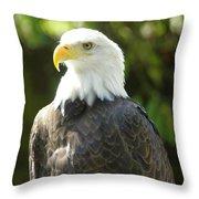 Manwe 2 Throw Pillow