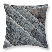 Misc 0006 Throw Pillow