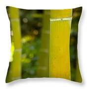 Mystical Bamboo Throw Pillow